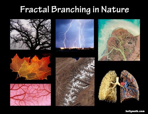 FractalBranching